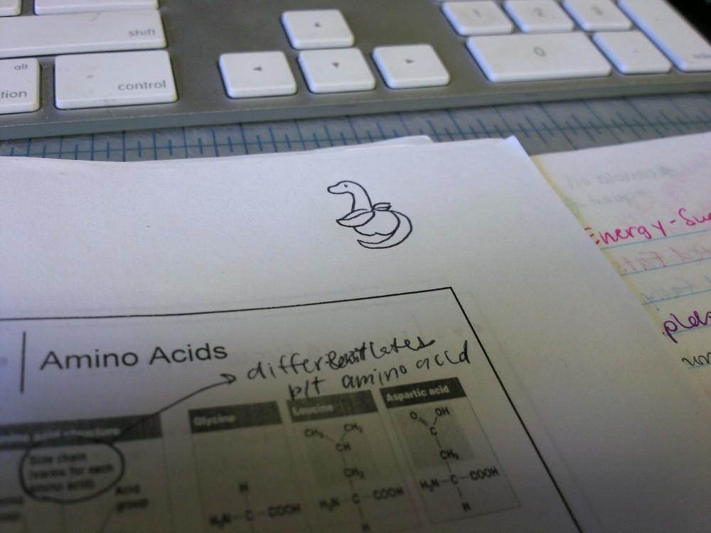 Work Dino Nutrition